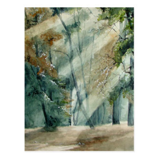 bosque tarjetas postales