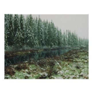 bosque tarjeta publicitaria