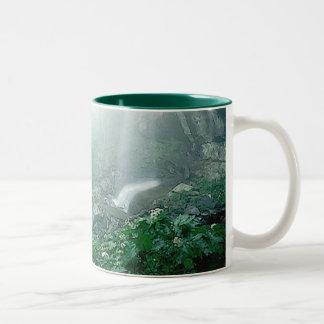 Bosque Taza De Café