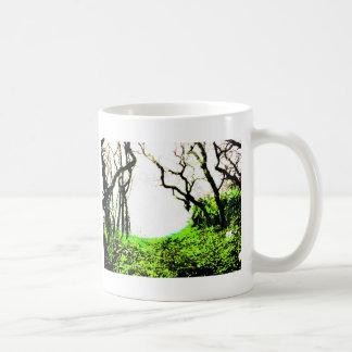 Bosque Taza