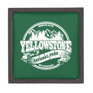 Bosque viejo del círculo de Yellowstone Caja De Joyas De Calidad