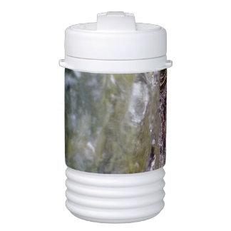 Bosque y agua enfriador de bebida igloo