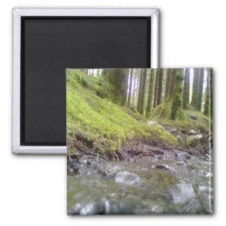 Bosque y agua imán cuadrado