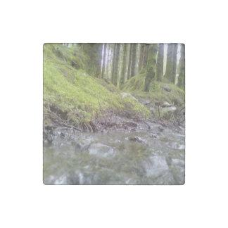 Bosque y agua imán de piedra