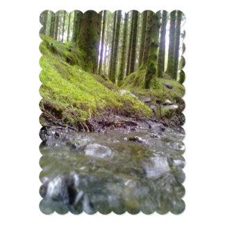 Bosque y agua anuncios personalizados