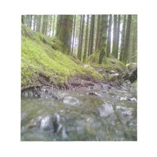 Bosque y agua libreta para notas