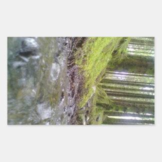 Bosque y agua pegatina rectangular