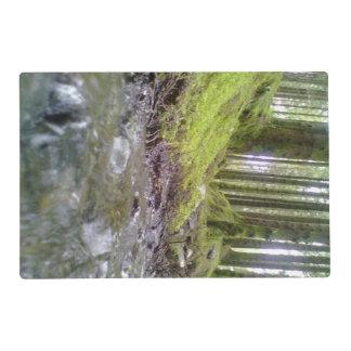 Bosque y agua salvamanteles