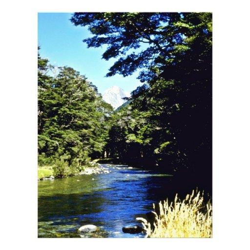 Bosque y río, PA nacional de aspiración de la haya Tarjeta Publicitaria