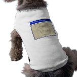 Bosquejo aficionado del Leprechaun Ropa Para Mascota