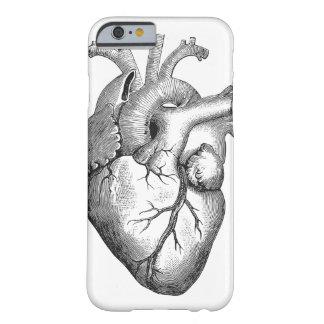 Bosquejo anatómico fresco del corazón del vintage funda para iPhone 6 barely there