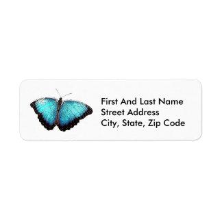 Bosquejo azul de la mariposa etiqueta de remitente