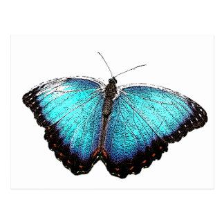 Bosquejo azul de la mariposa tarjetas postales