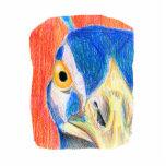 Bosquejo coloreado cabeza del dibujo de lápiz del  esculturas fotográficas