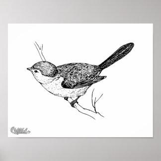Bosquejo curioso del pájaro de Bushtit Poster