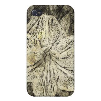 Bosquejo de antaño del Amaryllis iPhone 4 Protector