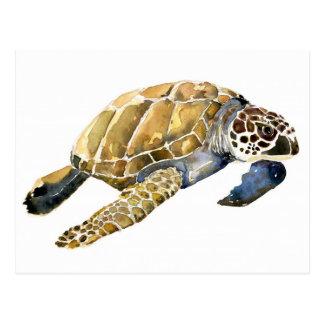 Bosquejo de la acuarela de la tortuga de mar postales