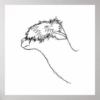 Bosquejo de la alpaca poster