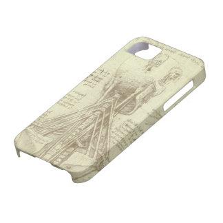 Bosquejo de la anatomía de la columna espinal Leon iPhone 5 Cobertura