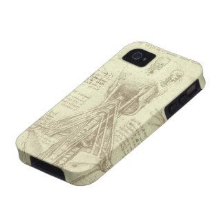Bosquejo de la anatomía de la columna espinal Leon Vibe iPhone 4 Carcasas