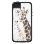 Bosquejo de la jirafa iPhone 5 cobertura