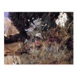 Bosquejo de la Waterhouse-Flor de Juan para el jar Postal