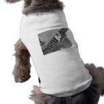 Bosquejo de preocupación del bw de la guitarra de  camisetas de perro