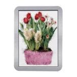 Bosquejo de tulipanes rojos y de jacintos blancos  imanes