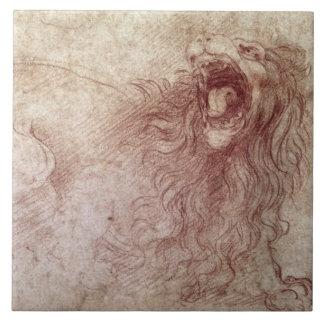 Bosquejo de un león del rugido (tiza roja en el pa azulejo cuadrado grande