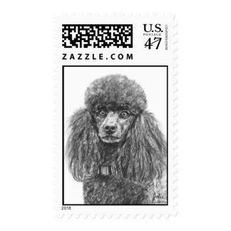 Bosquejo del carbón de leña del caniche estándar timbres postales