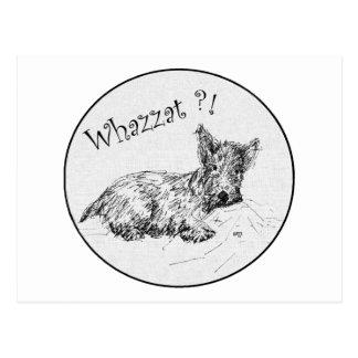 ¿Bosquejo del escocés - Whazzat? Postal