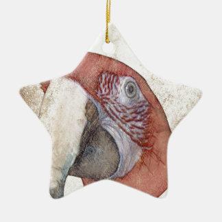 Bosquejo del estilo de la antigüedad del loro del adorno de cerámica en forma de estrella