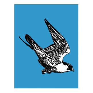 Bosquejo del halcón de peregrino postal