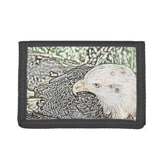 bosquejo del pájaro del águila coloreado oblicuo