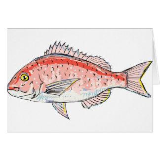 Bosquejo del rojo de la brema de mar tarjeta de felicitación