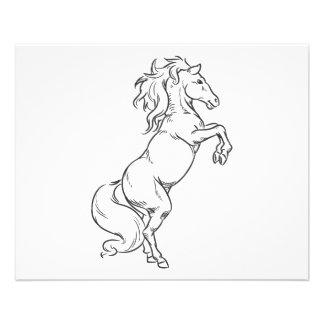 """Bosquejo del semental o del caballo Prancing Folleto 4.5"""" X 5.6"""""""
