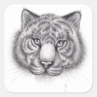Bosquejo del tigre pegatina cuadrada