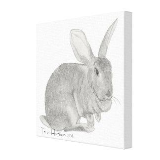 Bosquejo gigante flamenco del conejo impresión en tela