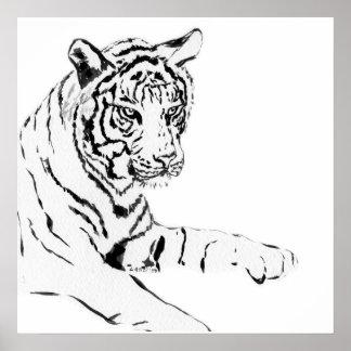 Bosquejo negro y blanco del tigre póster