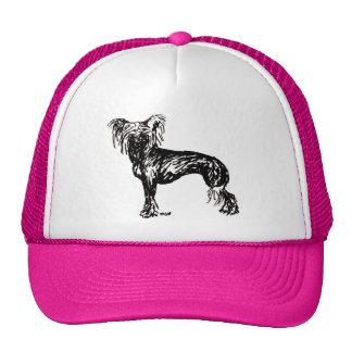 Bosquejo original con cresta chino del perro gorras