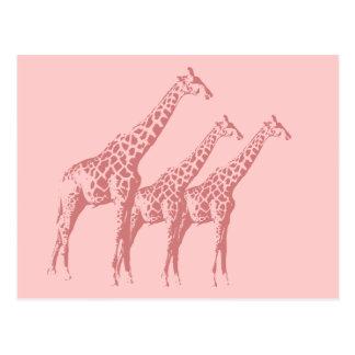 Bosquejo rosado de la jirafa tarjetas postales