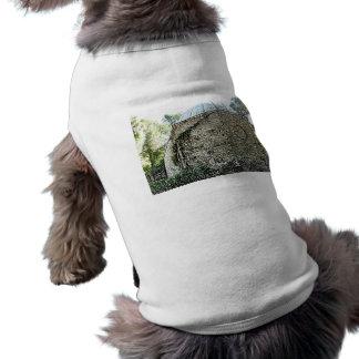 bosquejo St Augustine del edificio del Camisetas Mascota