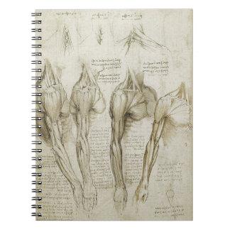 Bosquejos esqueléticos humanos de la anatomía de d libreta espiral