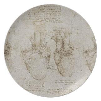 Bosquejos humanos de la anatomía del corazón de da plato para fiesta