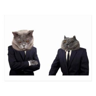 Boss cat is scolding employee cat postcard
