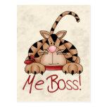 Boss Cat Postcard