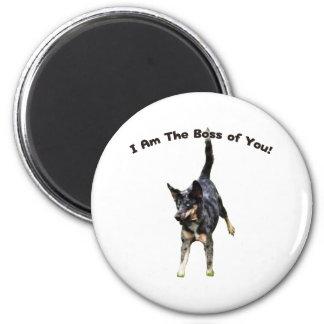 Boss de usted perro de Catahoula Imán Redondo 5 Cm