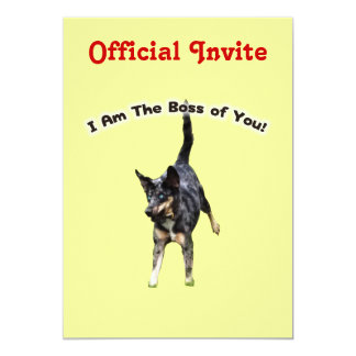 """Boss de usted perro de Catahoula Invitación 5"""" X 7"""""""
