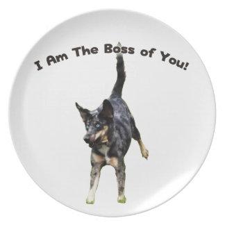 Boss de usted perro de Catahoula Plato