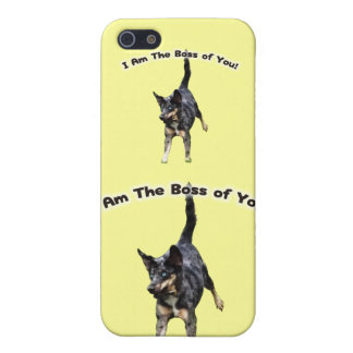 Boss of You Catahoula Dog Cover For iPhone SE/5/5s